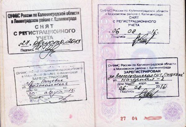 Выписка в паспорте